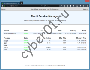 monit_overview